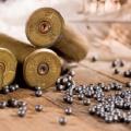 世界で3人に1人の子供が被害者に?鉛汚染、日本での原因は 狩猟の弾
