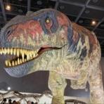 『「浜松恐竜ワールド2019」に行ってきた!実物大の動く恐竜や骨格見本よりも地元民が興奮するのはまさかのパネル展示?! - 2019年9月1日まで』の画像