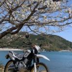 公式ブログ:YSP伏見《京都のヤマハバイク販売店》