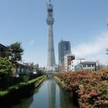 『東京ぐるっと1周走っちゃおう!』の画像