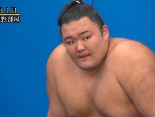 相撲オタクの4割「朝乃山は年内に横綱になると思う」