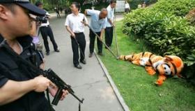 【日本社会】    クソワロタwwwwwwwwww  日本の動物園での 脱走対策の訓練の様子が 面白すぎるwwwwwww   海外の反応