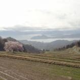 『田起し始めております』の画像