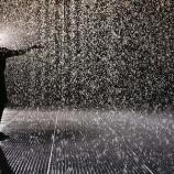 『雨が止まない世界に住みたい』の画像