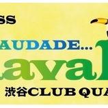 『2/11【SAUDE!SAUDADE CARNAVAL2019】渋谷クラブクアトロ』の画像