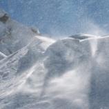 『 ジャコウウシと地吹雪』の画像