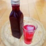 『梅果汁/赤しそシロップ(希釈タイプ)』の画像