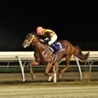 『【門別・ブリーダーズゴールドジュニアC結果】シャルフジンが5馬身差で圧勝』の画像