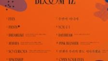 IZ*ONE 1stアルバム「BLOOM*IZ」トラックリスト公開 タイトル曲は「FIESTA」