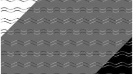 【画像】波線がジグザグに見える錯視…「曲がり盲」はなぜ起きる?