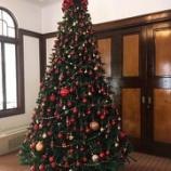 『【Salon de Angela様】藤田記念庭園洋館クリスマス装飾』の画像