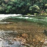 『一癖も二癖もある川沿いの土地を選んだ私の決断』の画像