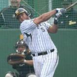 『【野球】虎・ゴメスは去年のコンラッド以下!? ヤクルトスコアラー超辛口評価 』の画像