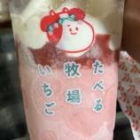 『【ファミマ限定:アイス】赤城 たべる牧場いちご』の画像