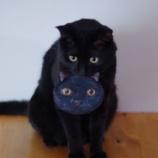 『Seriaのハロウィーン・黒猫ミニポシェット』の画像