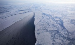 北極圏の海氷、「最後の砦」が観測史上初の崩壊 グリーンランド沖