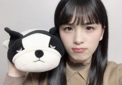 """【乃木坂46】あざとい? どっちの""""ぬいぐるみ""""がすこ???"""