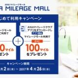 『ANAマイレージモールで1万円使って1,000マイルゲット』の画像