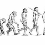 なぜ生物は繁殖すると思う?