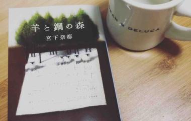 『読書感想文。調律する側から見たピアノの世界。詩のような小説。→宮下奈都『羊と鋼の森』』の画像