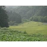 『収穫準備の棚田風景』の画像