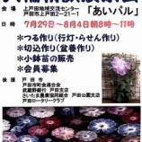 『大輪朝顔展示会開催中。上戸田地域交流してセンターあいパルにて。朝顔なので、朝顔8時から11時までの開催です。見事な大輪を観に来てください!』の画像