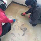 『床のこんな汚れ、諦めていませんか?』の画像