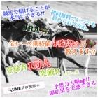 『完璧!!!【2点買い回収率925%】UMEマガ』の画像