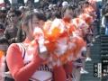 【画像】健大高崎のチアが可愛いとやきう民の間で話題にwwwwwwww