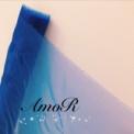 青のオーガンジー4m
