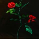 『『エローズ赤 大』』の画像