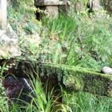 『国東物語(6)知られざる「豊饒な水」(4)清水寺霊水』の画像
