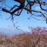 『00634-190218 富士山を見に静岡へ行った話』の画像