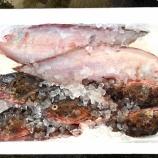 『おもしろきことなき世の中を(10)・国東の食環境(91)』の画像