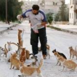 『内戦で荒廃したシリアのアレッポで猫を助け続ける男性』の画像