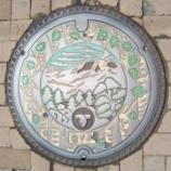 『長野県軽井沢市のマンホールを撮影』の画像