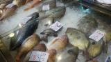 大卒スーパー店員ワイ(31)「サァサァお買い得お買い得ゥー!wwやってやってやってェ!www」