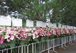 綺麗だけど・・・乃木坂46の「彼氏達」が送った祝花、ひっそりしていてなんとも言えねぇ・・・