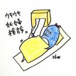 『🏥ウキウキ妊婦検診🏥』の画像