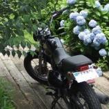『万葉の花の道の違法駐輪』の画像