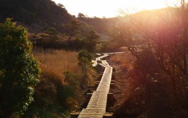 『九州・3日目久住山1791M』の画像