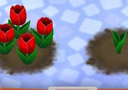 【ポケ森】どうぶつから「花」が要求されるようになった結果www【みんなの反応】