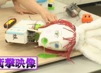 ネ申テレビ「闘え!ロボガール!」が神回だった!