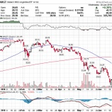『アルゼンチン株の新興国株指数新規組み入れは既存の長期投資家にとって悲報か』の画像