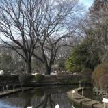 『冬から春へ②』の画像