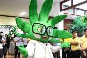 【大麻】「医療大麻」解禁のタイでクリニックに患者殺到 ゆるキャラまで登場させる政府全面推しの思惑