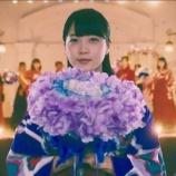 『【乃木坂46】乃木坂メンバーを花にたとえると・・・』の画像