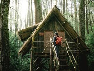 山小屋を自力で建てるのに興味あるんやが・・・