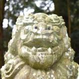 『ゴールドクラウンⅡ(2400回記念)(2)』の画像