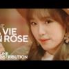IZONE『La Vie en Rose』で日本人が干されてるいる事が判明・・・